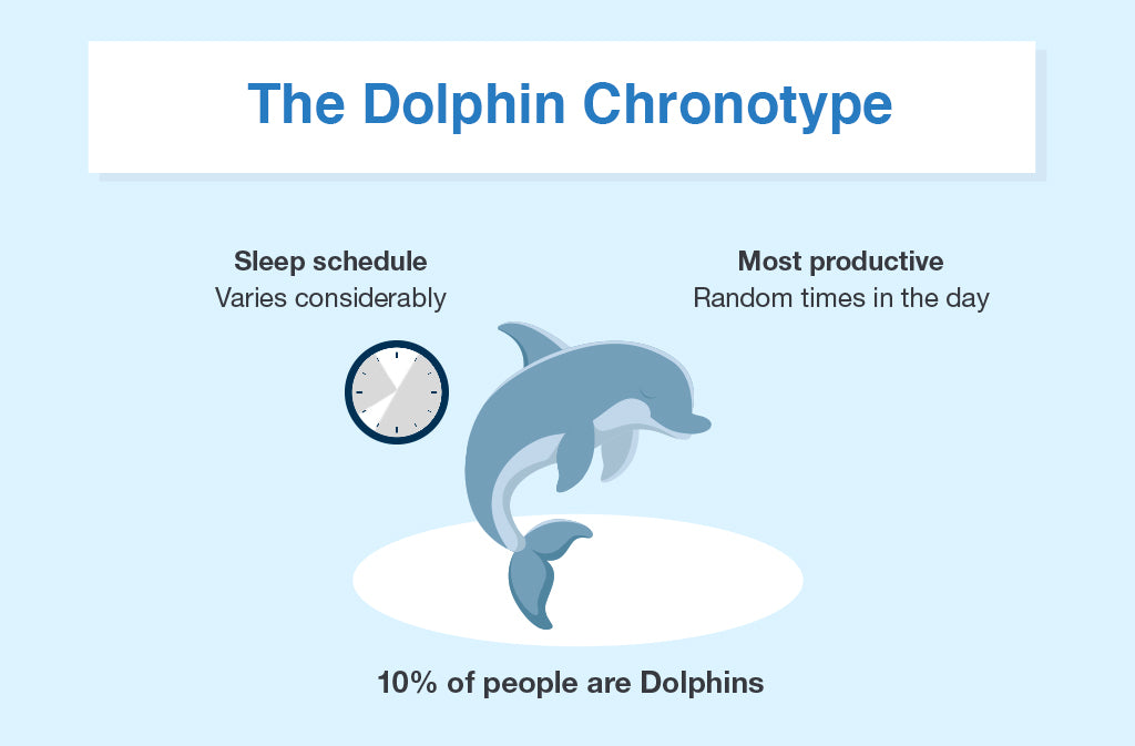 Dolphin Chronotype | Puffy