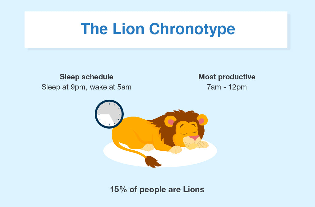 Lion Chronotype | Puffy