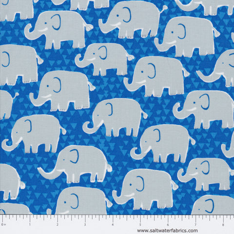 Born To Be Wild - Elephants in Blue