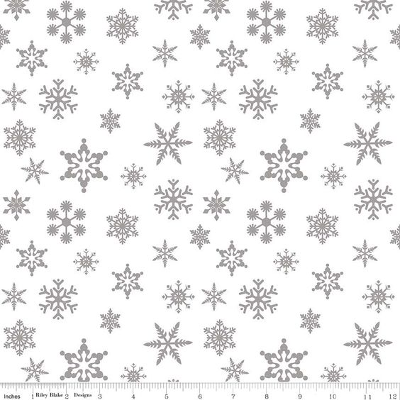 Snowflake Sparkle in Silver