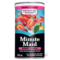 Minute Maid Berry Punch 295ml