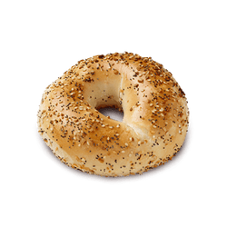 Everything Bagel (Pack of 6)