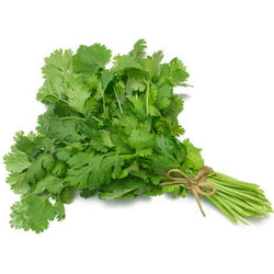 Coriander Leaves Bunch