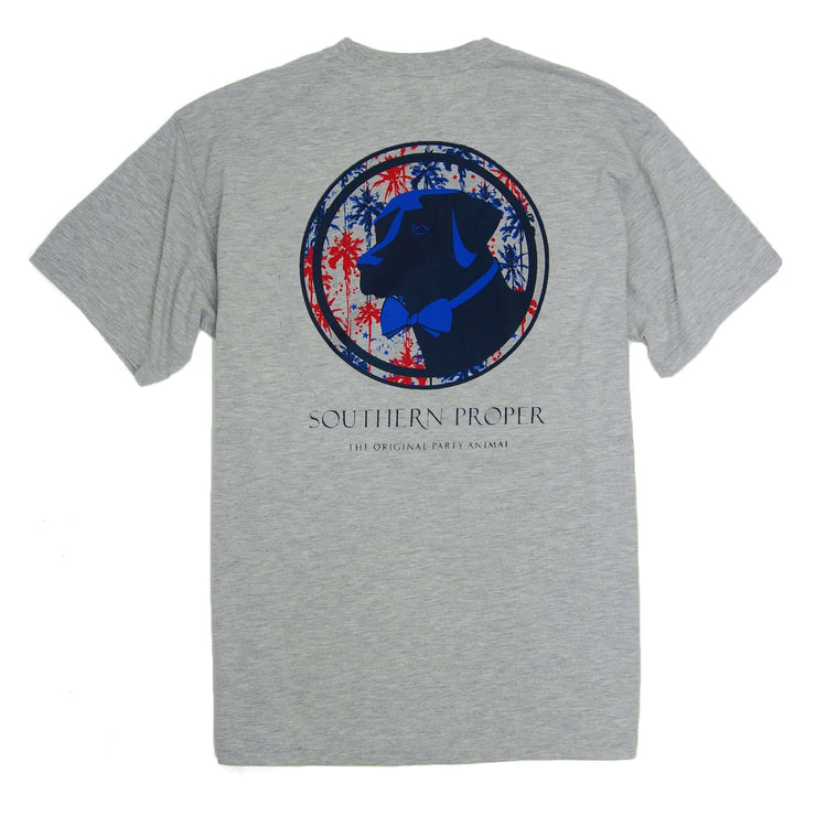 Southern Proper - Palmetto Firework Lab Tee: Heather Grey