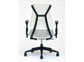 Ragon Task Chair with Arms