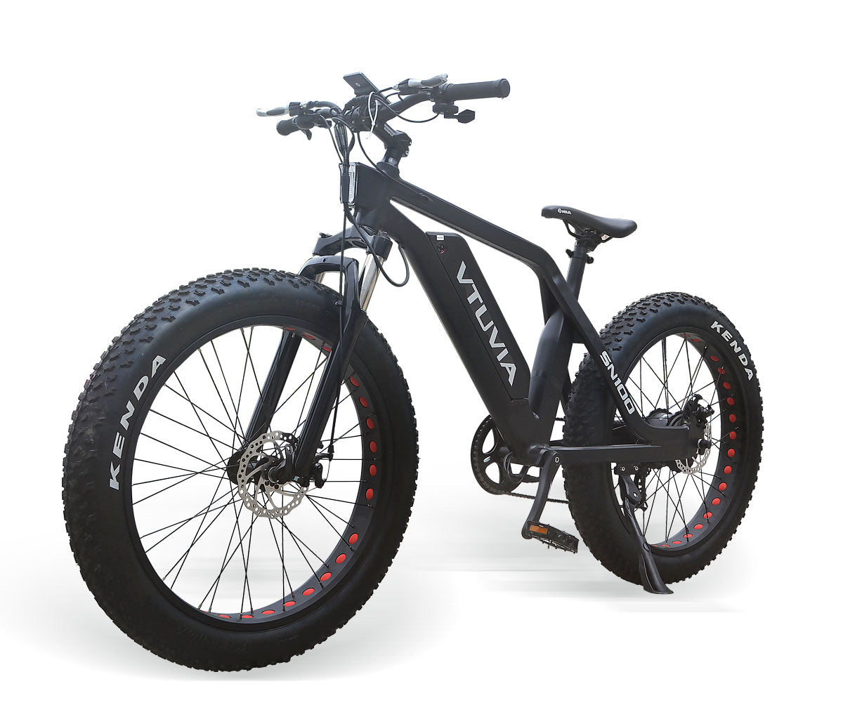 SN100 - 750 Watts Fat Tire Aluminum Electric Bike in 2 Colors