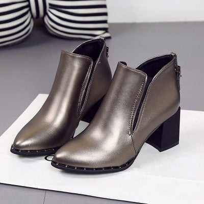 Pointed Toe Boots