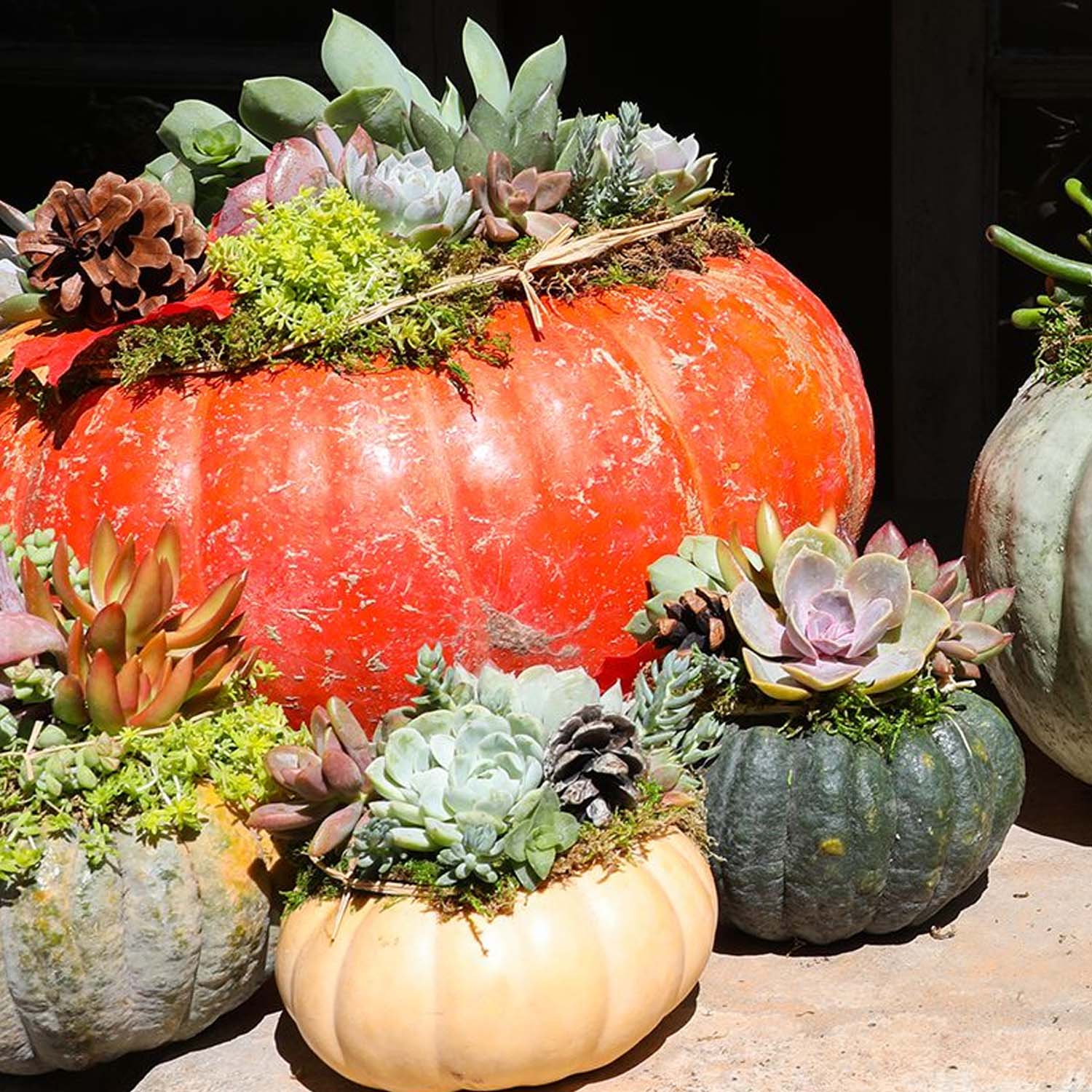 Front Porch Fall Inspiration