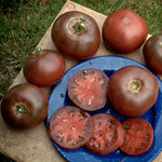 Buy Stabilized Cross Tomatoes