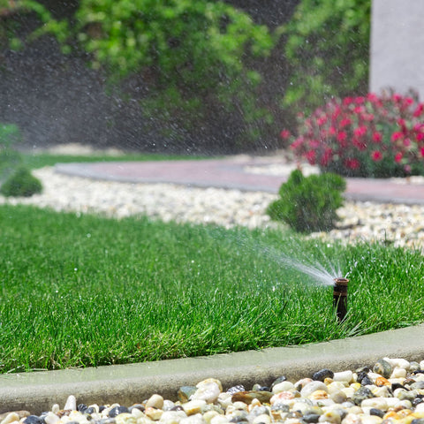 Sprinkler Watering A Southern California Lawn & Garden