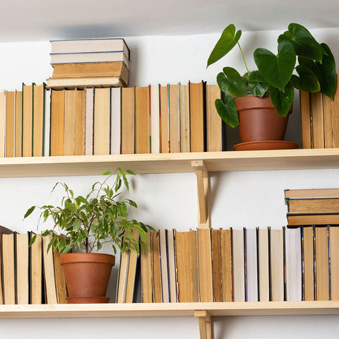 Plants In Decorative Indoor Planters Among Books On Two Shelves