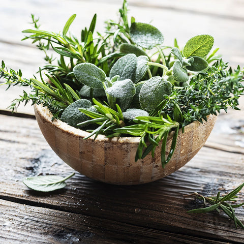 Bowl Of Fresh Herbs Picked From A California Garden