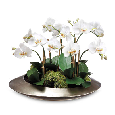"14"" White Orchid with Sedum Arrangement - Silk"