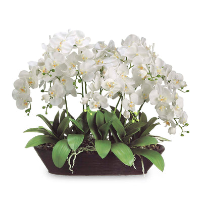 "27"" White Orchid Arrangement - Silk"