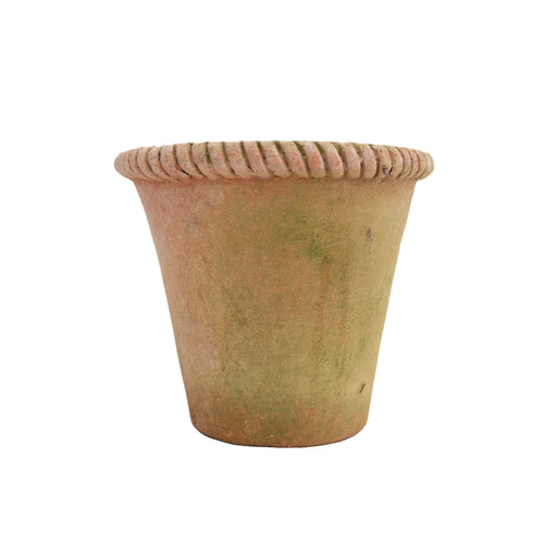 "6"" Braid Top Terracotta Planter"