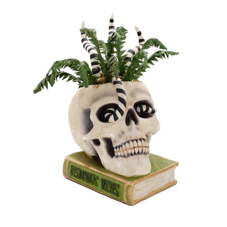 Hand Painted Halloween Skeleton Head - Light Up