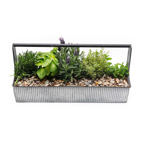 Deluxe Cocktail Herb Caddy