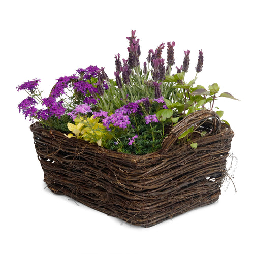 Medium Farmhouse Style Herb & Color Basket - Rectangle