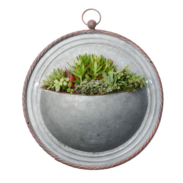 "Small 17"" Succulent Metal Wall Disc"