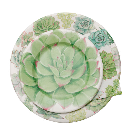 Succulents Paper Collection