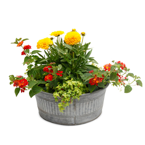 Lg. Low Summer Pollinator Design- Round Galvanized Tin