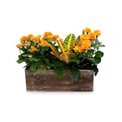 Fall Centerpiece In Rectangle Wood