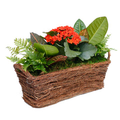 Fall Foliage In Small Rectangle Vine Basket