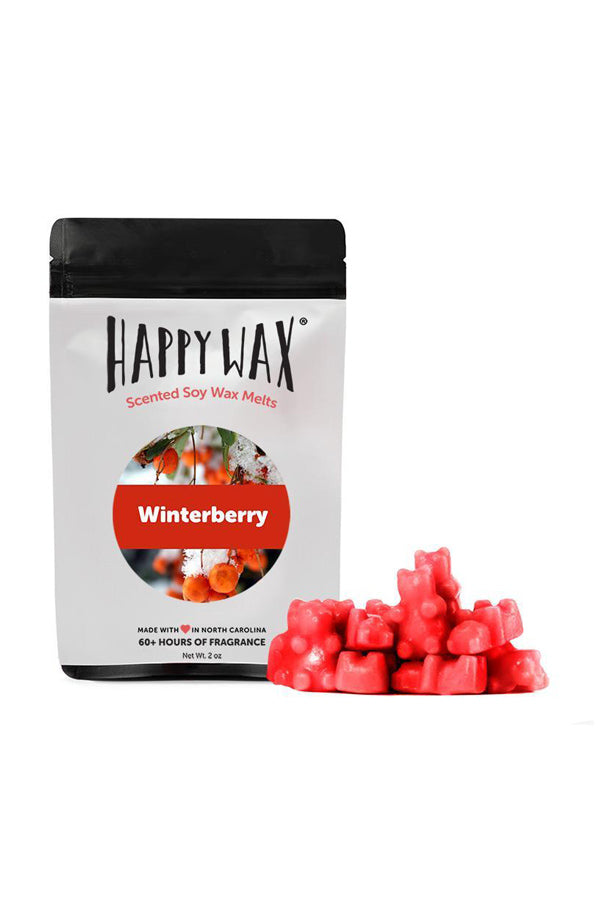 Holiday Wax Melts 2 oz. Sample Pouch *Clearance*