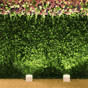 Backdrop 200cm Boxwood Topiary Foliage Wall Melbourne Hire