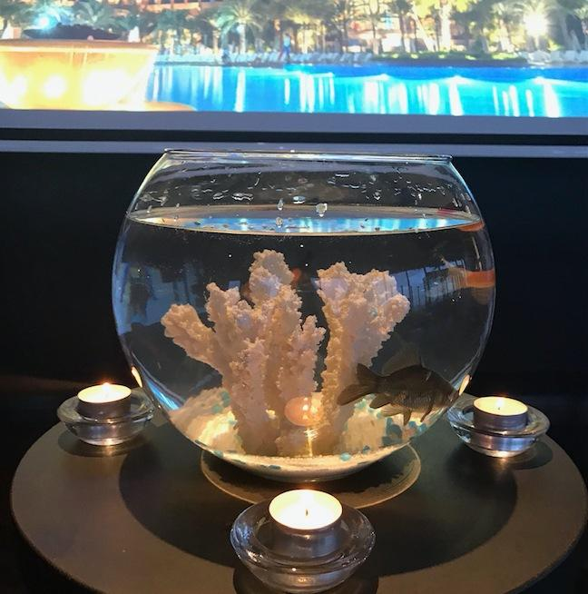 Props Hire - Real Goldfish Bowls Set Of 15 Melbourne Hire