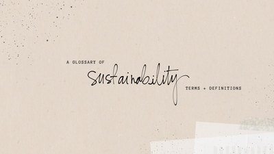 Glossary: Sustainability Terms + Definitions