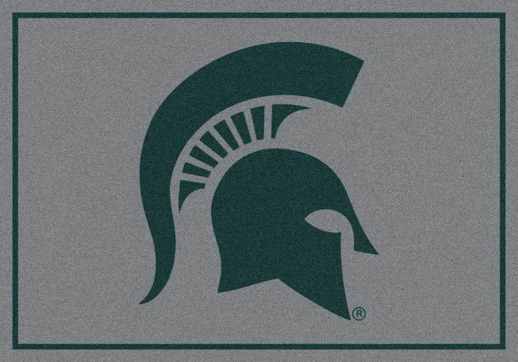 Michigan State Rug Team Spirit Gray - Fan Cave Rugs