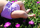 Purple Hippybottomus Reusable Nappy in Grass