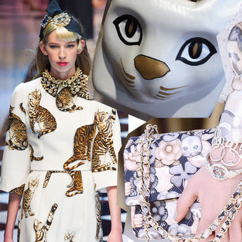 2016/2017 Runway: Top 20 Cats from the Catwalk