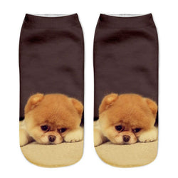 Unisex 3D Brown Dog Printed Socks