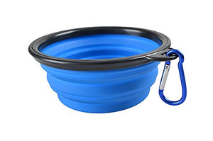 blue pet bowl