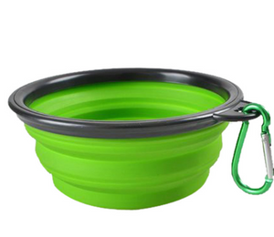 green pet bowl