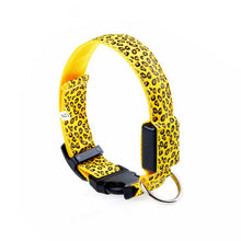 Wholesale Led Pet Collar Yellow