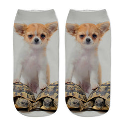 Unisex 3D White Dog Printed Socks