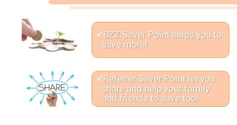 Bzz Holiday, Bzz World Travel referrer Points
