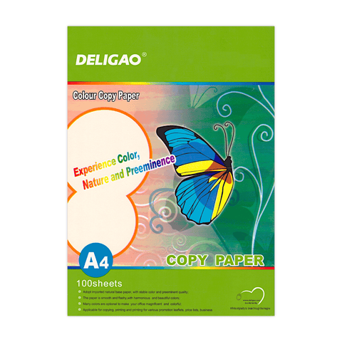 Deligao Colored Copy Printer Paper A4 Pack of 5 Colors