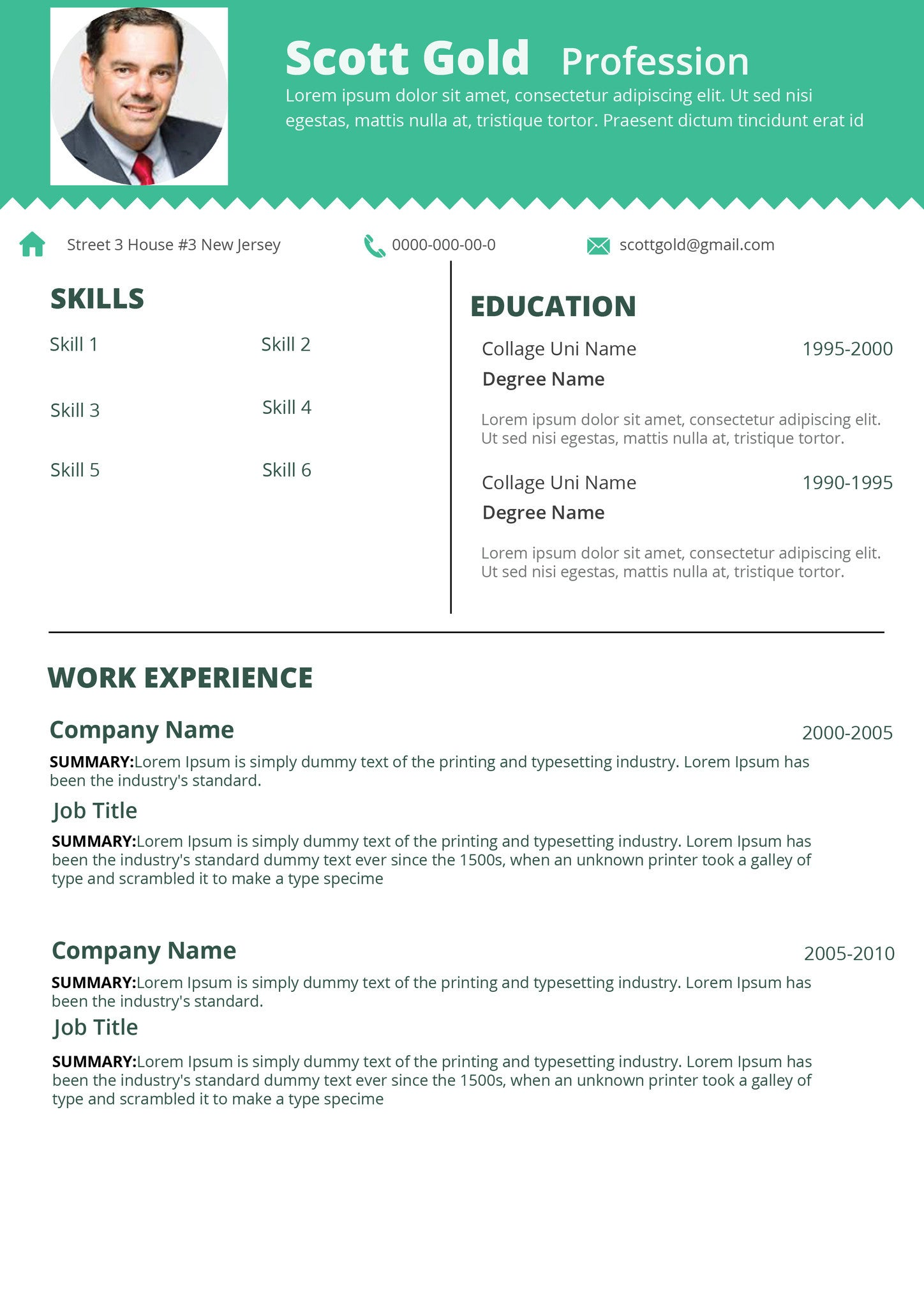 Resume 017 Resumes Experts