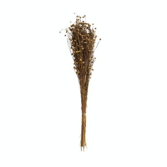 Dried Natural Flax Bunch