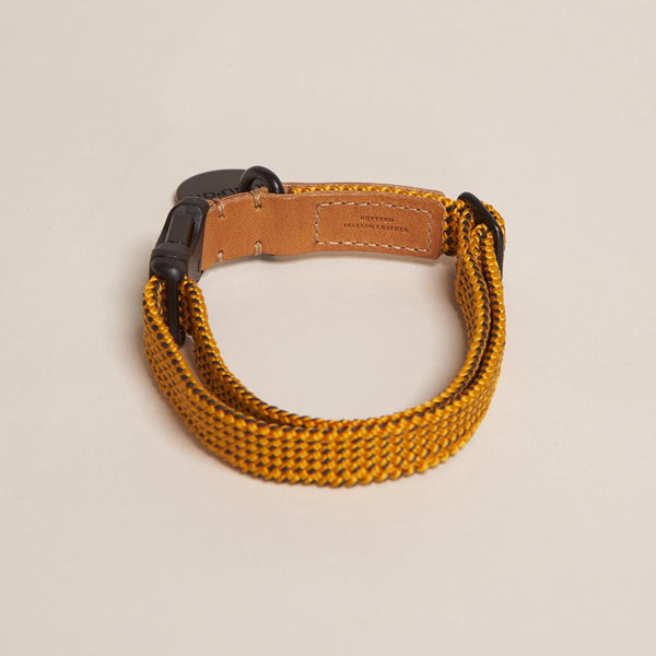 Collar Ribbon Amarillo