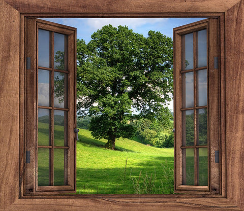 Open Window Nature