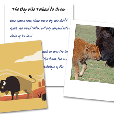 The Kid's Creative Bison Contest(s)