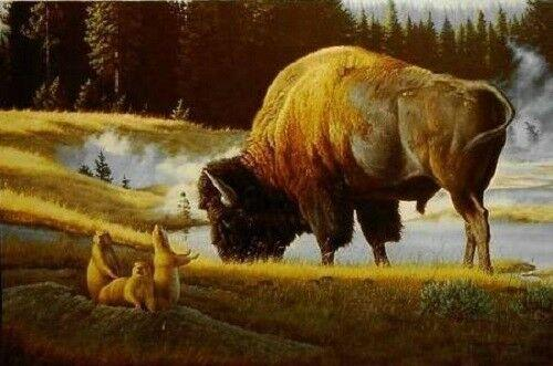 Bison in Art
