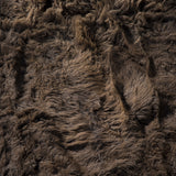Bison Hide Close-up