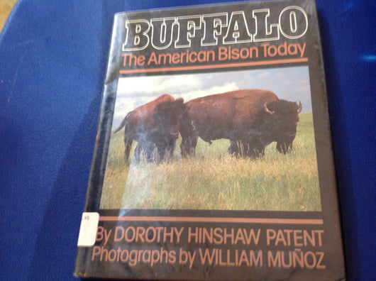 Buffalo: The American Bison Today