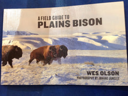 A Field Guide to Plains Bison